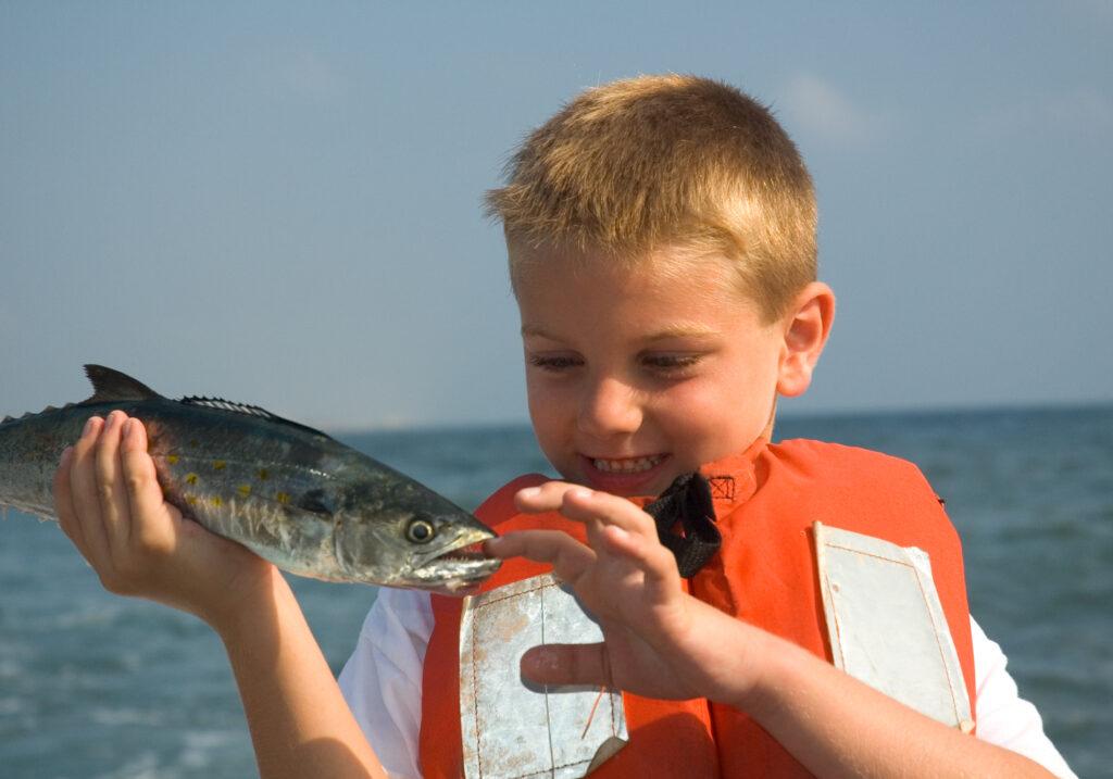 Boy On Charter Fishing Boat ,Spanish Mackerel Bite